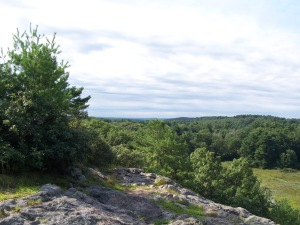 View from top of Joe's Rock