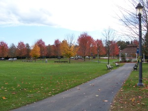 Bellingham Town Common 5