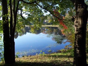 Choate Park 1