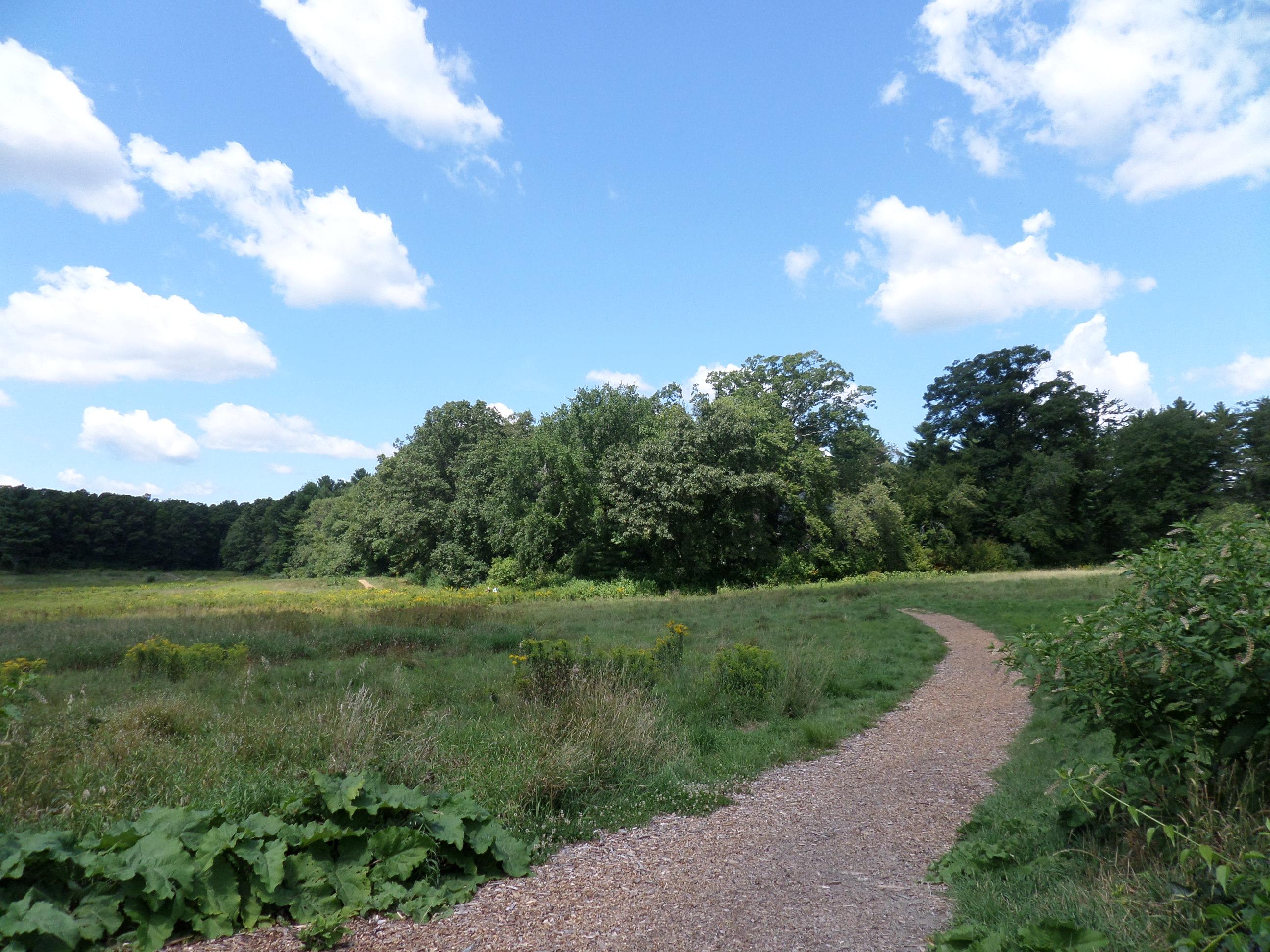 Sam Garden Farms Bellingham Ma