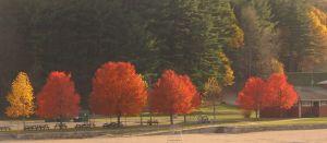 Hopkinton (MA) State Park