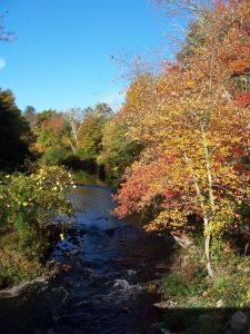 Upper Charles River, Millis, MA