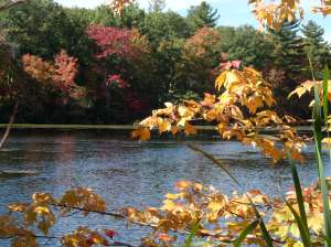 Along the shores of Silver Lake, Bellingham, MA
