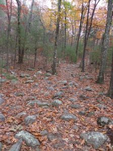 Rocks along the trail up a hill, along the Wolf Hill Trail, Smithfield, RI