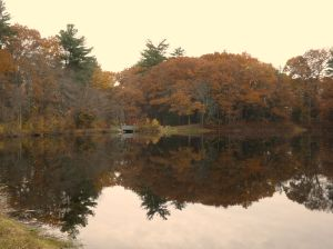 Choate Pond in its late fall glory