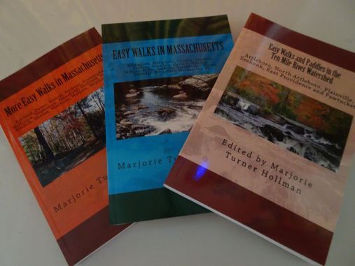 3 book pic