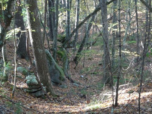heavily forested trail with rock shelf