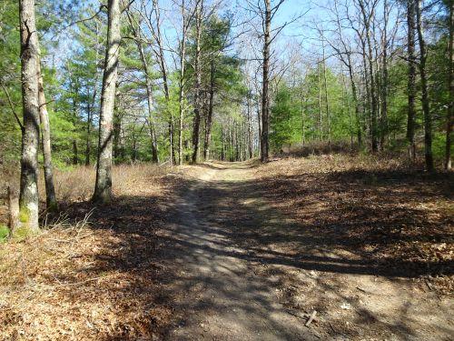 trail Myles Standish